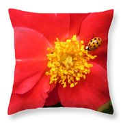 Rose And Visitor Throw Pillow