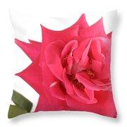 Rose Blooming Throw Pillow