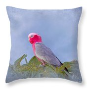 Rose Breasted Cockatoo In A Eucalyptus Tree Throw Pillow