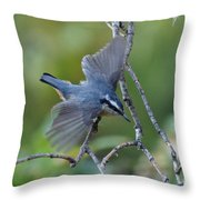 Rose Breasted Nuthatch Flying Throw Pillow