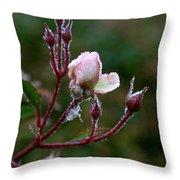 Rose Candelabra Throw Pillow