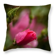 Rose Drop Throw Pillow