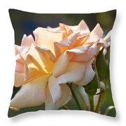 Rose Flower Series 15 Throw Pillow