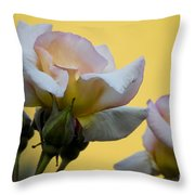 Rose Flower Series 3 Throw Pillow