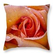 Rose Flower Series 8 Throw Pillow