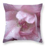 Rose II Throw Pillow