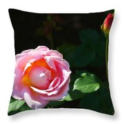Rose In Chicago Botanic Garden Throw Pillow