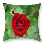 Rose Mist Original  Throw Pillow