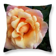 Rose Of Many Pastels Throw Pillow