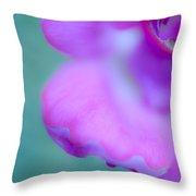 Rose Petal Abstract 2 Throw Pillow