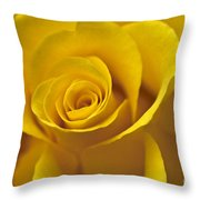 Rose Poetry Throw Pillow