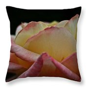 Rose Rising Throw Pillow