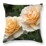 Rose Rosa Sp Just Joey Variety Flowers Throw Pillow