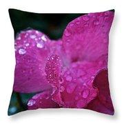 Rose Water Beads Throw Pillow