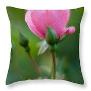 Rose With Pink Glow Throw Pillow