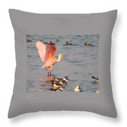 Roseate Spoonbill At The Bay Throw Pillow