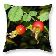 Rosehips Throw Pillow