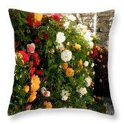 Roses Roses Everywhere Throw Pillow