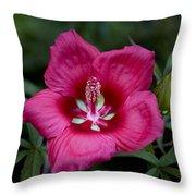 Rosey Blossom Throw Pillow