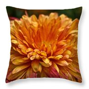 Rosey Glow Mum Throw Pillow