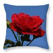 Rosie Skies Throw Pillow