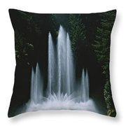 Ross Fountain Dancing In Front Of Lush Throw Pillow