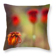 Rosso Beauties Throw Pillow