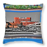 Roswell Park Cancer Institute Throw Pillow