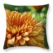 Rosy Glow Mum Throw Pillow