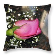 Rosy Reflections Throw Pillow