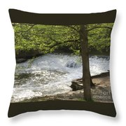 Rouge River At Fair Lane Throw Pillow