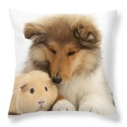 Rough Collie Pup And Yellow Guinea Pig Throw Pillow