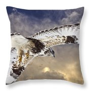 Rough Legged Hawk In Flight Throw Pillow