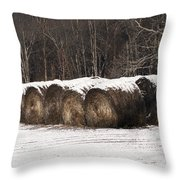 Round Hay Bales Throw Pillow