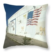 Route 66 Wall Throw Pillow