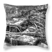 Routes In Roots  Throw Pillow