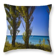 Row Of Cypress Trees At Point Betsie In Michigan No.0924 Throw Pillow