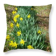 Row Of Daffodils Throw Pillow