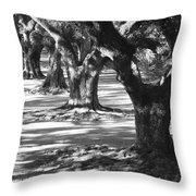 Row Of Oaks - Black And White Throw Pillow