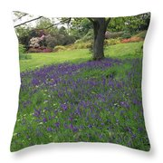 Rowallane Garden, Co Down, Ireland Wild Throw Pillow