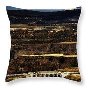 Rowena Overlook Throw Pillow