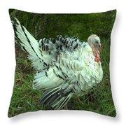 Royal Palm Turkey Throw Pillow