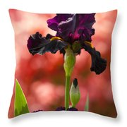 Royal Purple Tall Bearded Iris With Peachy Azalea Background Throw Pillow