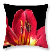 Royal Red Throw Pillow