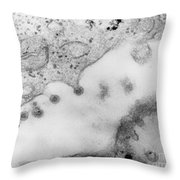 Rubella Virus Throw Pillow by Science Source