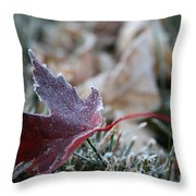 Ruby Frost Throw Pillow