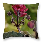 Ruby Ready For Action Throw Pillow