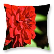 Ruby Red Dahlia Throw Pillow