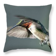 Ruby-throated Hummingbird - Hover Throw Pillow