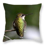 Ruby-throated Hummingbird - Hummingbird - Content Throw Pillow
